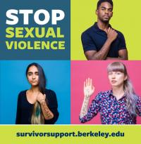 Stop Sexual Violence banner