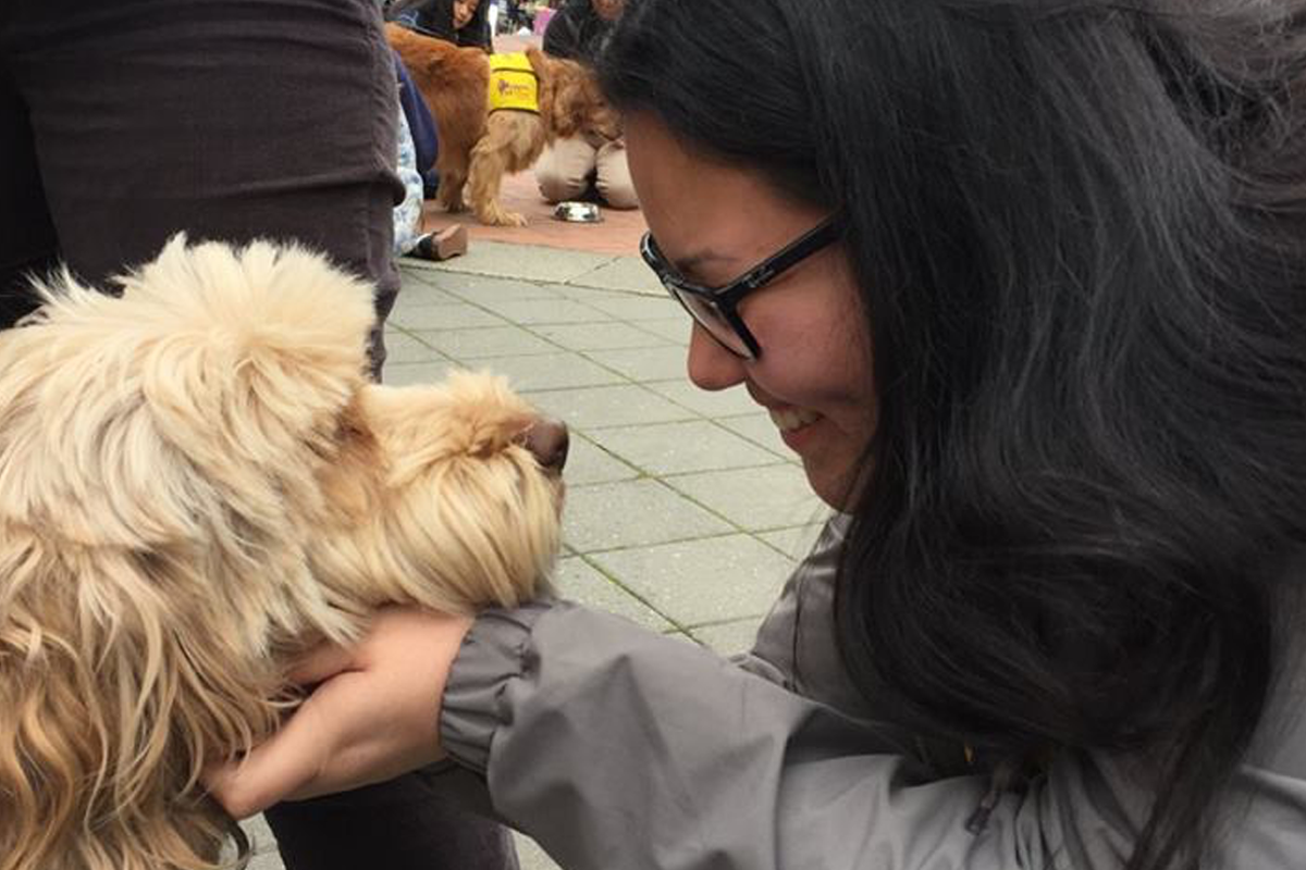 Pet Hugs on Sproul - March 2017