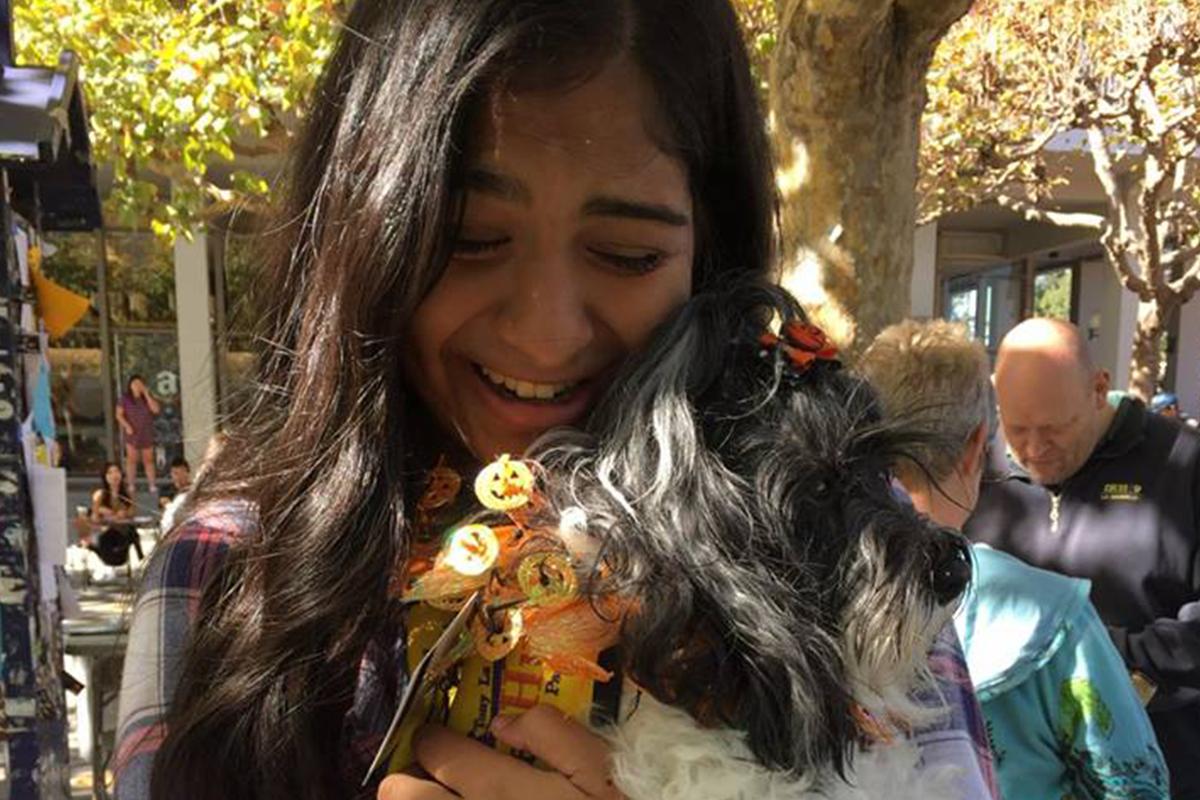 Pet Hugs on Sproul - November 2016