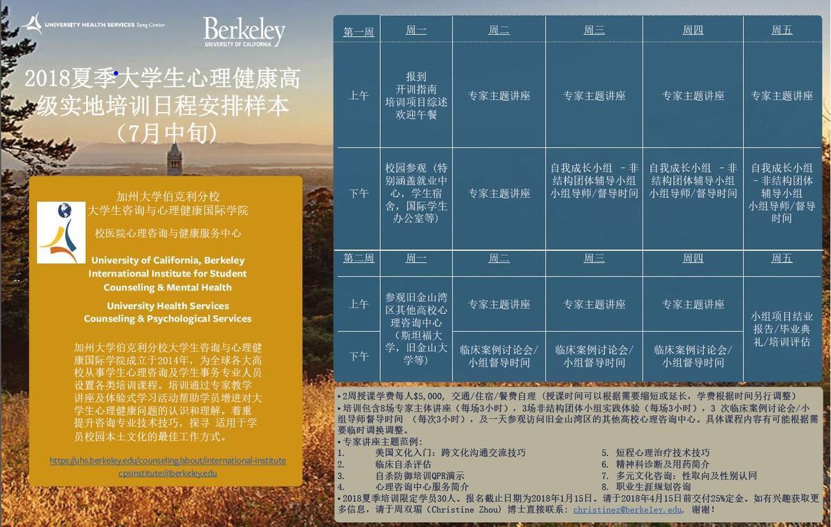 Institute Flyer