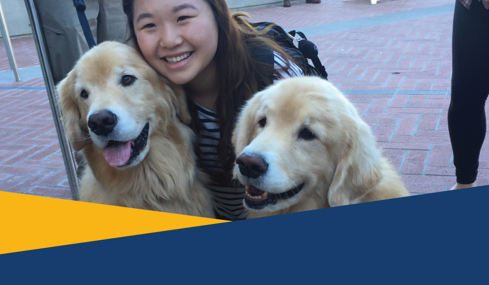 Refresh for Finals with Pet Hugs!