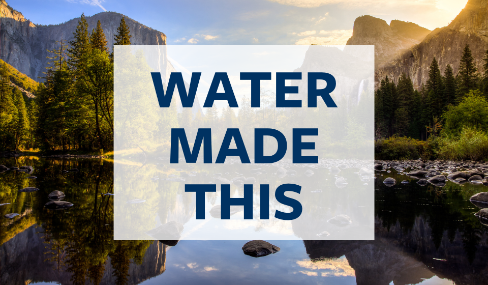 Water Made This Campaign