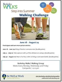 Summer Walking Challenge Flyer