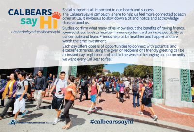 Cal Bears Say Hi Postcard graphic